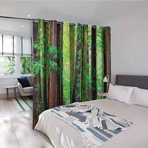Woodland Outdoor Gromets Curtain for Patio Drapes for Boys Room, Redwood Trees Northwest Rain Forest Tropical Scenic Wild Nature Lush Branch Room Darkening Curtains, Green Redwood, W96 x L84 Inches