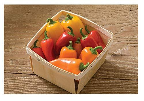 Sweet Pepper - David's Garden Seeds Pepper Specialty Lunchbox Mix SL3515 (Multi) 25 Non-GMO, Organic Seeds