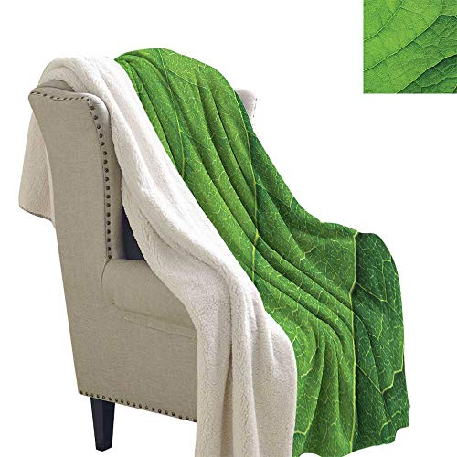 Benmo House Blanket Small Quilt Green,Macro Texture of Green Leaf with Veins Environment Foliage Botany Ecology,Lime Green Fern Green Sherpa Throw Blanket 60x78 Inch ()