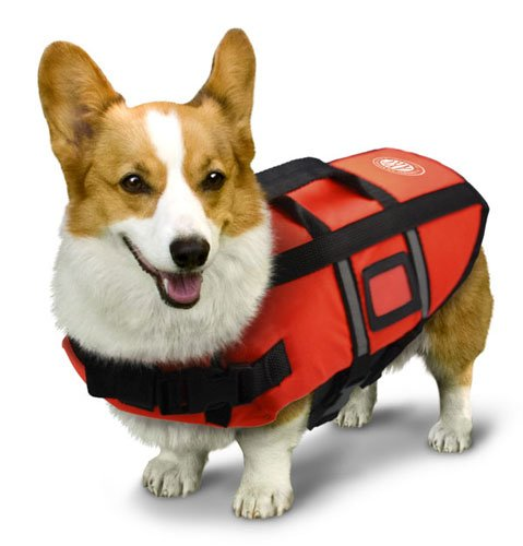 AKC Pet Life Jacket with Reflective Stripes, Lift Handle and Storage Bag, Extra Small, Orange, My Pet Supplies