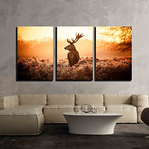 Red Deer in Morning Sun x3 Panels