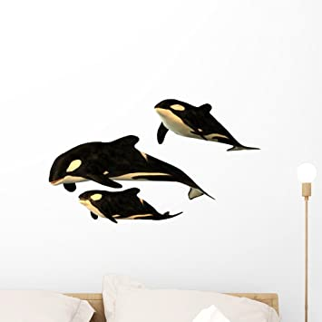 Wallmonkeys Orca Killer Whale Wall Decal Peel And Stick Animal Graphics 18 In H X 18