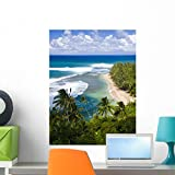 Wallmonkeys Kee Beach from Kalalau Trail Wall Decal Peel and Stick Graphic WM77469 (24 in H x 18 in W)