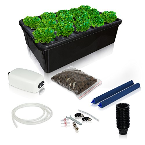 Aeroponic Rooting Machine (DWC Hydroponics Growing System Kit - 2 Large Airstone, 14 Plant Sites (holes) Bucket w/ Air Pump - Best Indoor Herb Garden for Cilantro, Mint - Complete Hydroponic Setup Grow Fast at Home by SavvyGrow)