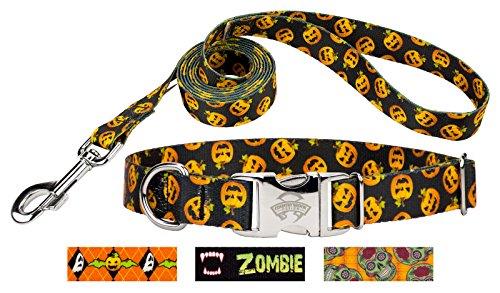 (Country Brook Design Happy Jack Premium Dog Collar & Leash -)
