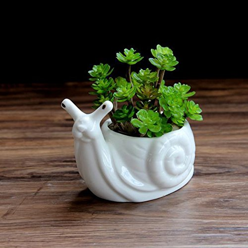 Chive – Set of 3 Succulent Planter 3 Inch Pot with Drainage Hole and Saucer, Small Contemporary Ceramic Pot for Home Decor and Gardening