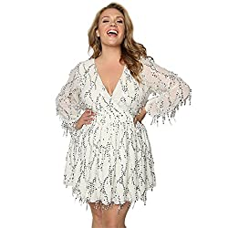 Plus Size Sequin Beaded Fringed Mini Dress