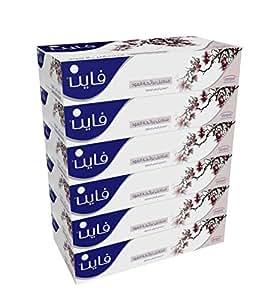 FINE Facial Tissues Oud 100x2 Ply White Tissues/ 6 Pack