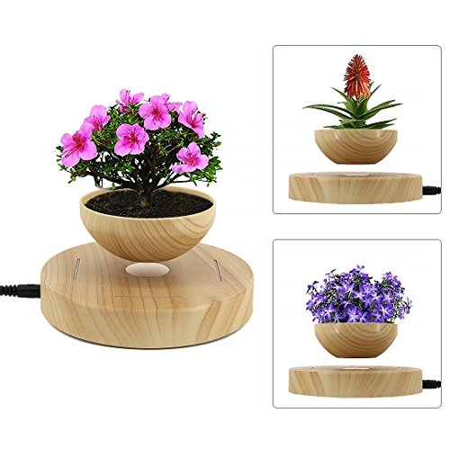 Segreto LED Levitating Flower Floating Pot Christmas Gift Air Bonsai Pot Potted Plant for Home Decor