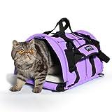 Sturdibag Large Designer Colors Pet Carrier (Lavender), My Pet Supplies