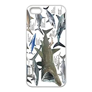 Various Shark Hight Quality Plastic Case for Iphone 5s