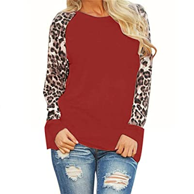 DBHAWK Womens Long Sleeve Tunic Tops Pullovers Sweatshirt Leopard Print Patchwork Blouses T-Shirt Tees: Clothing
