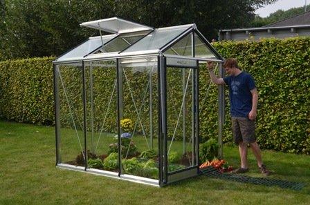 ACD Piccolo cristal efecto invernadero: Amazon.es: Jardín