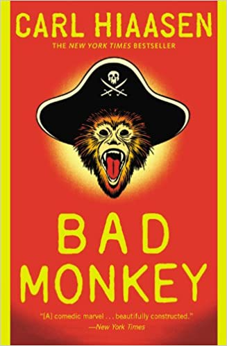Image result for Bad Monkey