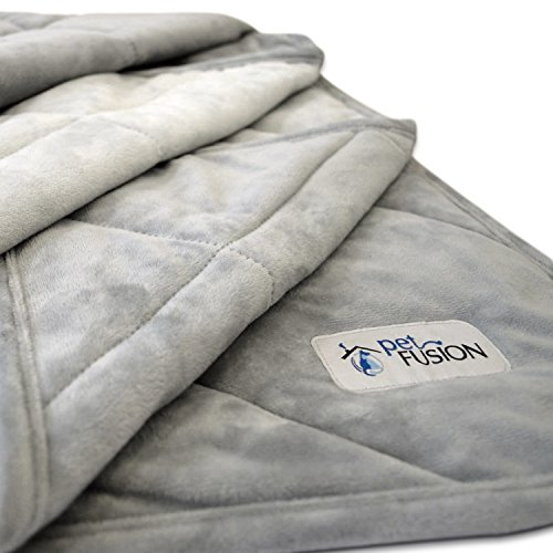 PetFusion Premium Plus Quilted Medium Dog Blanket (42x34''). Light Inner Fill 70GSM, Reversible Gray Micro Plush. [100% soft polyester] by PetFusion
