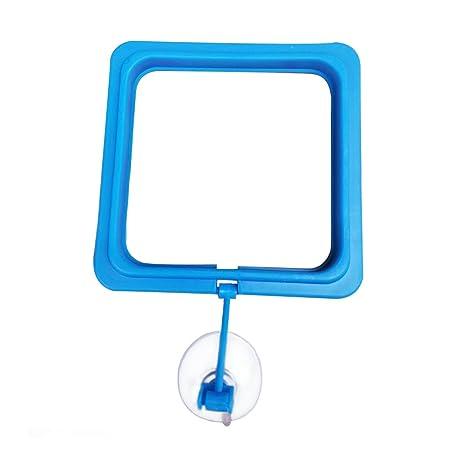 UxradG Anillo de plástico para acuario o pecera, con forma de círculo, para alimentar