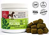 Superfood Dog Bites with Moringa | Immune System Booster | Anti-Aging | 100% Natural & Organic Vegetarian Dog Supplement Providing Natural Vitamins, Minerals, Essential Amino Acids