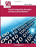 Cloud Computing Synopsis and Recommendations, nist, 1494712318
