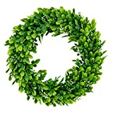 Bhappy Artificial Green Leaves Wreath Boxwood with Fruits 15 inches Small for Outdoor Indoor Front Door Home Wall Window Wedding Farmhouse Decor