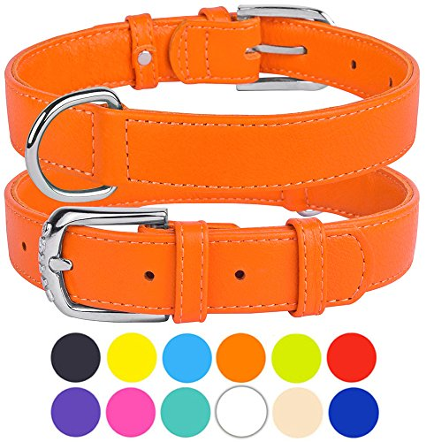 (CollarDirect Genuine Leather Dog Collar 12 Colors, Soft Padded Collars for Puppy Small Medium Large, Mint Green Black Pink White Red Blue Purple (Orange, Size L Neck Fit 16