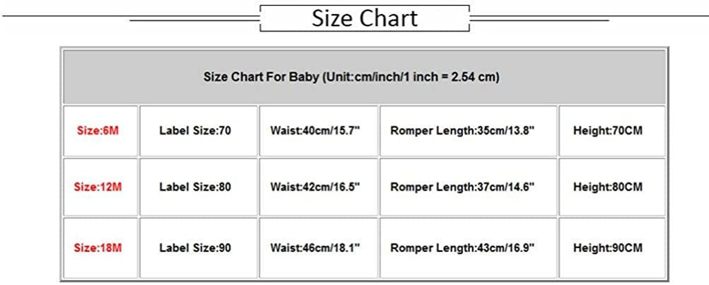 FreshZone Baby Girls Floral Print Ruffles Jumpsuit Outfits Summer Beach Pool Clothes,6-18 Months