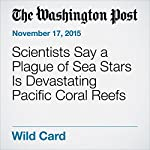 Scientists Say a Plague of Sea Stars Is Devastating Pacific Coral Reefs | Darryl Fears