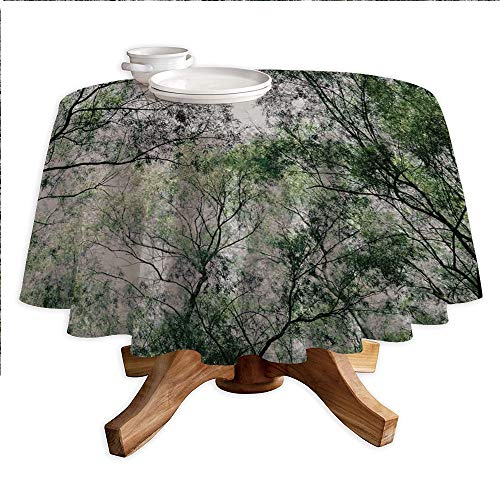 Forest Home Decor Round Polyester Tablecloth,Tree Branch in Spring Season Fairy Jungle Growth Nature Look Up Wood Scene,Dining Room Kitchen Round Table Cover,55