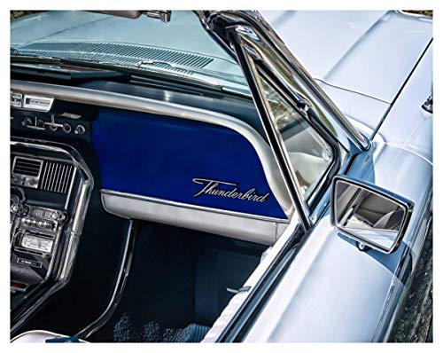 Ford Thunderbird Classic Car Fine Art Print - 11x14 Unframed Photo Wall Art - Gift for Vintage Car Lovers or Gear Heads. Decor for the Game Room, Man Cave, Dorm or Garage. Poster present Under $20 - Ford Thunderbird Color