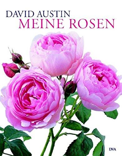 meine-rosen
