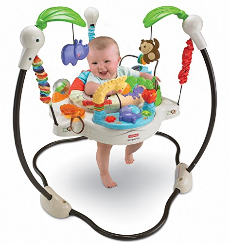 Fisher-Price Luv U Zoo (Baby Saucers)