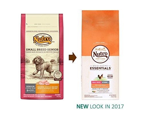 Where To Buy Nutro Essentials Dog Food