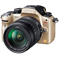 Panasonic digital SLR camera LUMIX GH1 GOLD DMC-GH1K-N