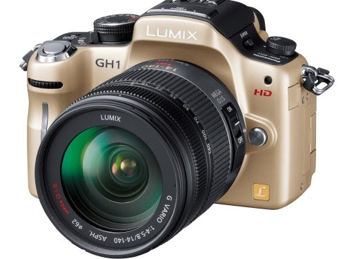Panasonic digital SLR camera LUMIX GH1 GOLD DMC-GH1K-N