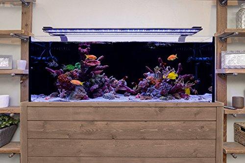 Current-USA-Orbit-Marine-Aquarium-LED-Light