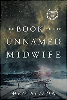 Image result for the book of the unnamed midwife book cover