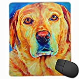Golden Retriever Watercolor Flame Office Rectangle Non-Slip Rubber Mouse Pad Comfortable Gaming Mouse Pad for Laptop Displays Tablet Keyboard