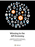 Winning in the API Economy