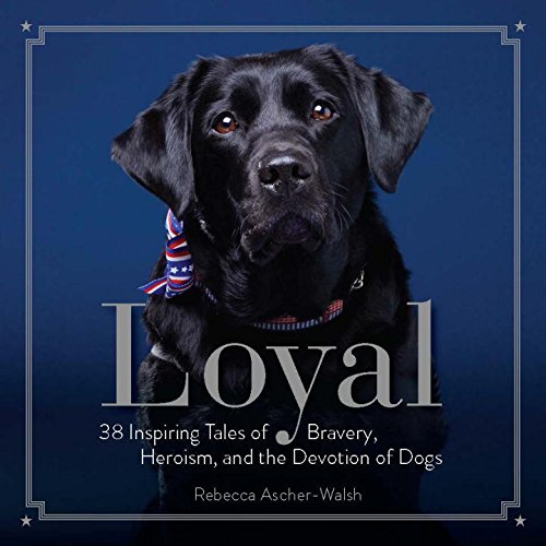 loyal-38-inspiring-tales-of-bravery-heroism-and-the-devotion-of-dogs