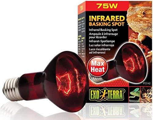 heat light bulb - 5
