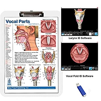 Vocal Parts, Pharynx & Larynx Anatomical Chart, Speech Language Pathology Visual Double Sided Card for Vocal Folds and the Larynx, Slp, Singing Blue Tree Publishing Inc.