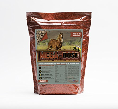 Horse Guard Mega Dose Equine Vitamin Mineral Hoof & Probiotic Supplement, 10 lb