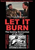 LET IT BURN - The Coming Destruction of the USA?