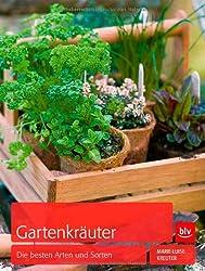 Gartenkräuter: Die besten Arten und Sorten
