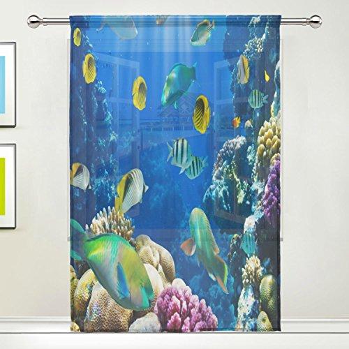 Tropical Fish Window - 8