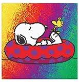 Ceaco Peanuts Snoopy On A Raft Puzzle (300 Piece)