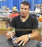Frank Mir Autographed official black UFC Gloves JSA