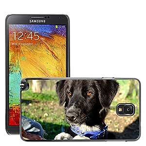 Print Motif Coque de protection Case Cover // M00126664 Perro Negro Animales perro de mascota // Samsung Galaxy Note 3 III N9000 N9002 N9005