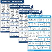 Palace Learning 4 Pack - Dumbbell Workout Exercise Posters Volume 1, 2 & 3 + Stretching Chart - Set of 4 E
