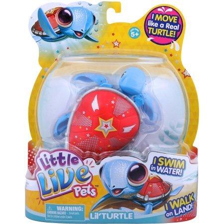 Little Live Pets S3 Lil' Turtle Single Pack, Super Star