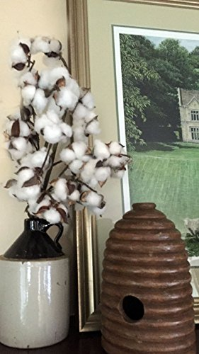 Cotton Stems Premium – THREE Stems – 29 TALL – 9 Bolls/Heads per Stem – Lifelike Southern Farmhouse Style Floral Filler Country Rustic Wedding Center…